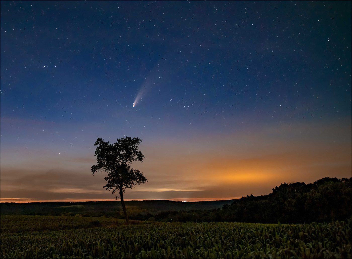 Flight-Of-The-Comet-And-The-Firefly